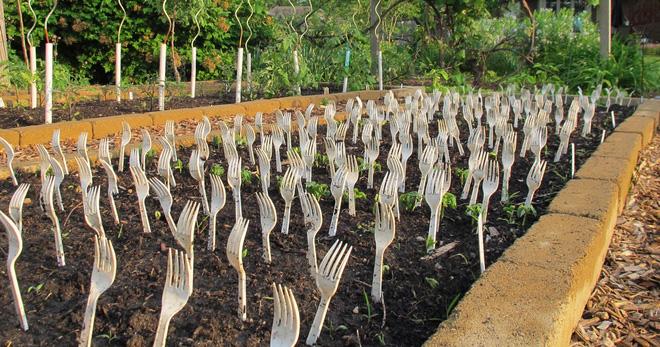 Thấy hàng xóm cắm nĩa lởm chởm trong vườn thật kỳ cục, hỏi ra mới biết đó là một ý kiến tuyệt vời